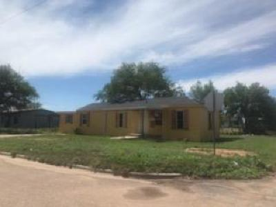 Slaton Single Family Home For Sale: 1105 E Geneva Street
