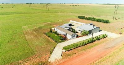 Sudan TX Single Family Home For Sale: $155,000