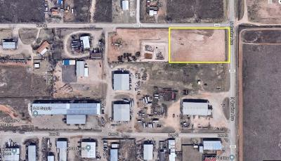 Lubbock County Residential Lots & Land For Sale: 4601 County Road 6300