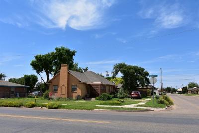 Littlefield Single Family Home For Sale: 319 E Waylon Jennings