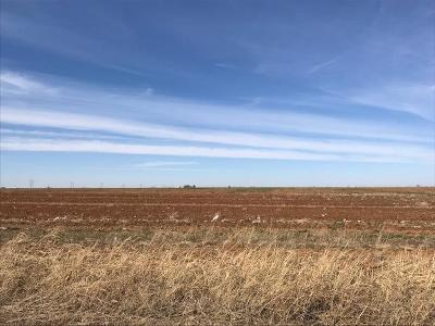 Lubbock Farm & Ranch For Sale: 1822 Farm Road 1729