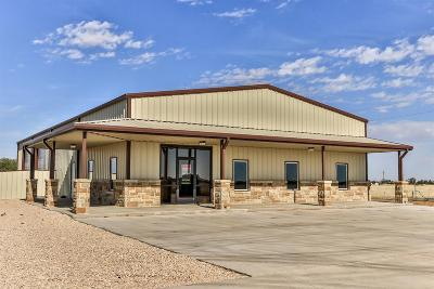 Lubbock Commercial For Sale: 9316 Farm Road 1585
