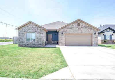 Shallowater Single Family Home For Sale: 1132 17th Street