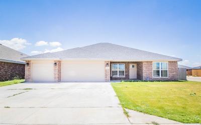 Single Family Home For Sale: 5213 Marshall Street