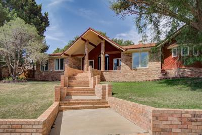 Ransom Canyon Single Family Home For Sale: 7 S Lakeshore Drive
