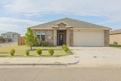 Lubbock Single Family Home For Sale: 5019 Jarvis Street
