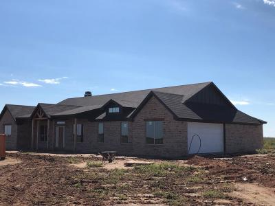 Lubbock Single Family Home For Sale: 3416 E Farm Road 1729