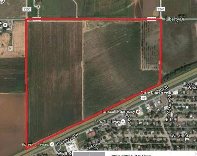 Farm & Ranch For Sale: Idalou