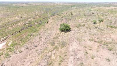 Farm & Ranch For Sale: County Road 207