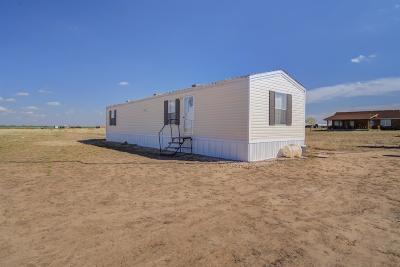 Lubbock Single Family Home For Sale: 19403 County Road 2165