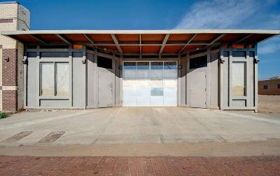 Lubbock County Commercial For Sale: 2214 Buddy Holly Avenue