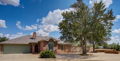 Slaton Single Family Home For Sale: 802 Belton Drive