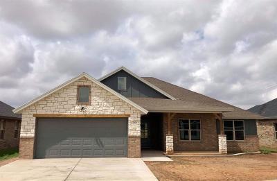 Lubbock Single Family Home For Sale: 12204 Jordan Avenue