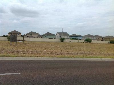 Laredo TX Commercial Lots & Land For Sale: $199,900