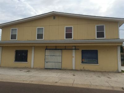 Laredo Multi Family Home For Sale: 3611 Monterrey Ave