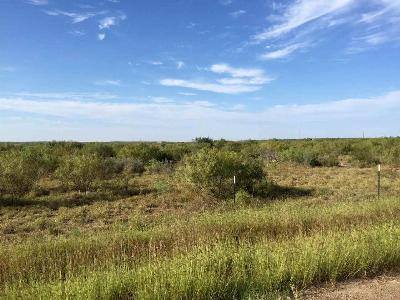 Laredo TX Residential Lots & Land For Sale: $214,500