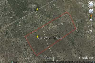 Ranch For Sale: Fm 3169 Zapata Hwy