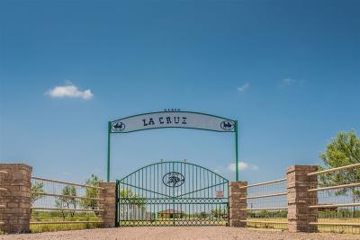 Laredo TX Residential Lots & Land For Sale: $289,000