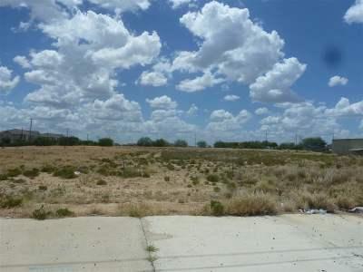Laredo Commercial Lots & Land For Sale: 1020 & 1022 Bob Bullock Lp