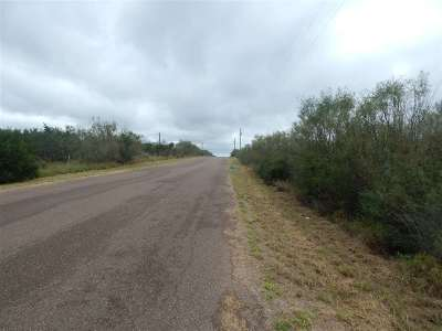 Laredo TX Residential Lots & Land For Sale: $300,000