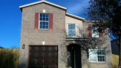Laredo Single Family Home For Sale: 3067 St Pius Ln