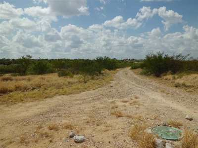 Laredo Residential Lots & Land For Sale: Century Blvd