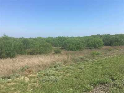 Laredo Commercial Lots & Land For Sale: Colombia Rd