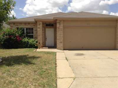 Single Family Home For Sale: 1718 Denmark Ln