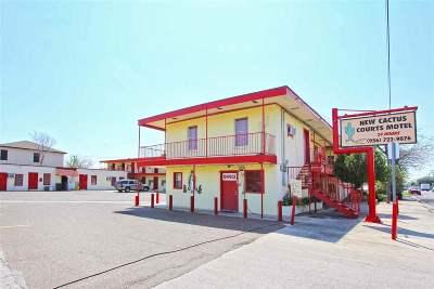 Laredo Commercial For Sale: 4119 Santa Maria Ave