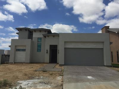 Laredo Single Family Home For Sale: 2710 Glover Lp