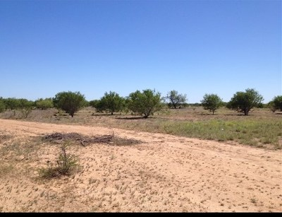 Residential Lots & Land For Sale: Tract 1 U.s. Hwy 83