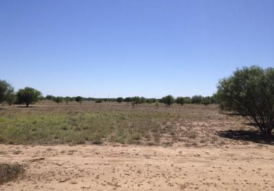 Residential Lots & Land For Sale: Tract 3 U.s. Hwy 83