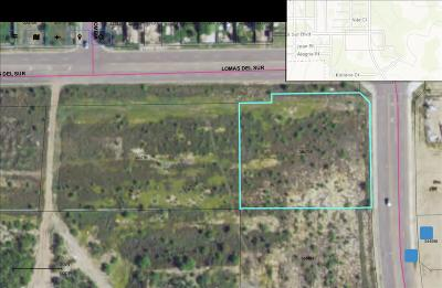 Commercial Lots & Land For Sale: 3219 Lomas Del Sur