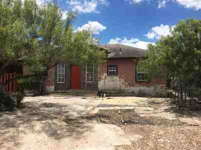 Laredo Single Family Home For Sale: 222 Barrera Rd