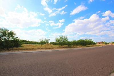 Laredo TX Residential Lots & Land For Sale: $444,900