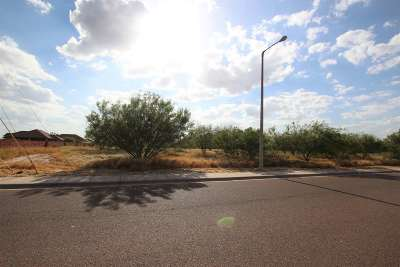 Laredo TX Commercial Lots & Land For Sale: $169,500