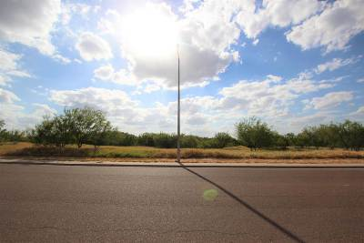 Laredo TX Commercial Lots & Land For Sale: $165,000