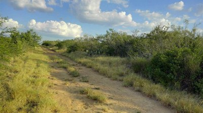 Laredo Residential Lots & Land For Sale: San Juan Rd