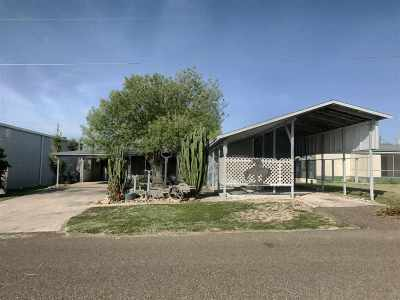 Zapata Single Family Home For Sale: 266 Mesquite St