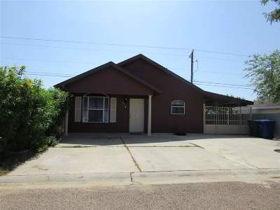 Laredo Single Family Home For Sale: 513 Minutemen Dr