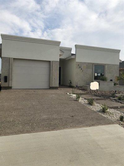 Laredo Single Family Home Option-Show: 1641 Tabasco Dr