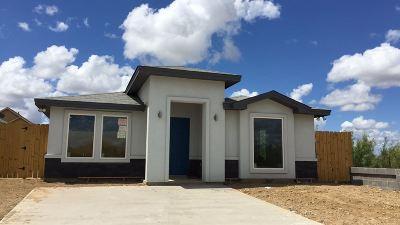 Laredo Single Family Home For Sale: 4101 Andrea Ct