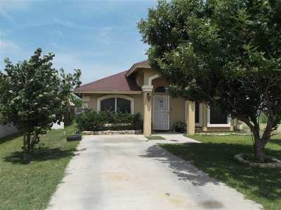 Laredo Single Family Home For Sale: 1408 Pistachio Ct