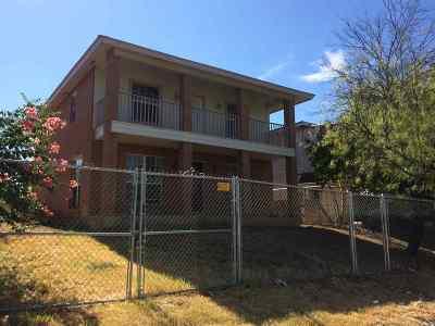 Laredo Single Family Home For Sale: 3509 S Texas Ave