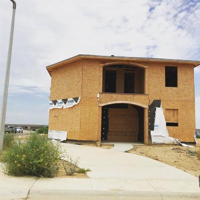 Laredo Single Family Home For Sale: 5116 Frijolillo Dr