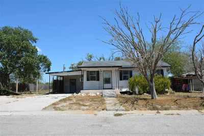 Freer Single Family Home For Sale: 204 Shell St.