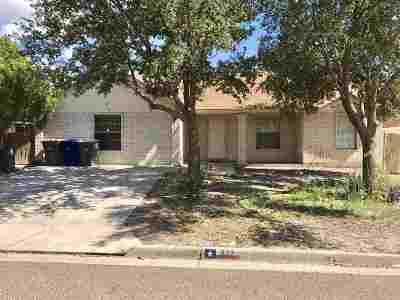 Laredo Single Family Home For Sale: 219 Corral Lp