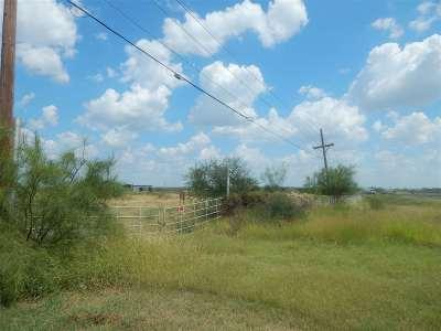 Laredo Commercial Lots & Land For Sale: Fm 1472 Rd Las Minas St