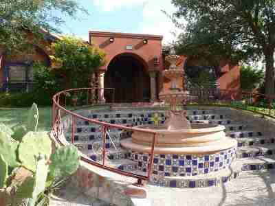 Laredo Single Family Home For Sale: 325 St Julien Dr