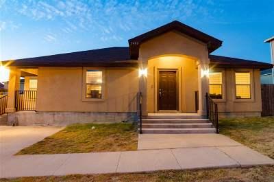 Laredo Single Family Home Extended: 3406 Nubes Dr